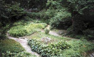 thumbnail3 300x183 - Texture in the Garden