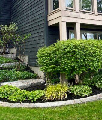 maintain_gardens_michaelscottlandscaping